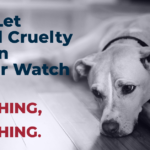 Animal Cruelty v2