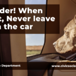 Don't Leave Pets in Cars