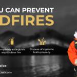 Wildfires v3
