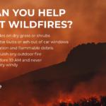 Wildfires v2