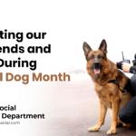 National Dog Month