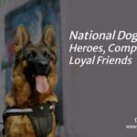 National Dog Month v2